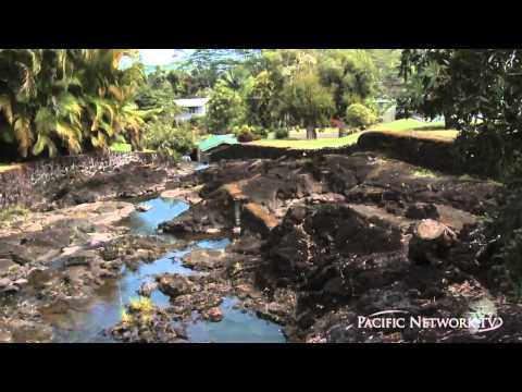 Hilo's Homemade Hydroelectric Dam