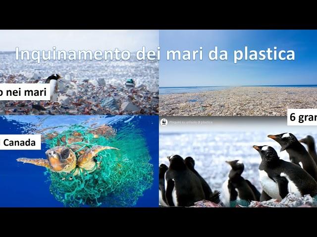 La biodiversità è il nostro futuro