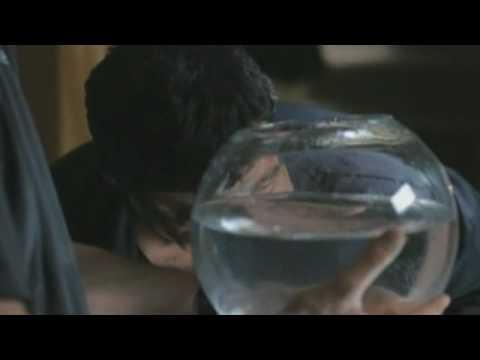 Cura di alcolismo delle erbe di casa
