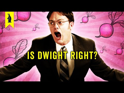 The Secret Genius of Dwight K. Schrute (The Office)