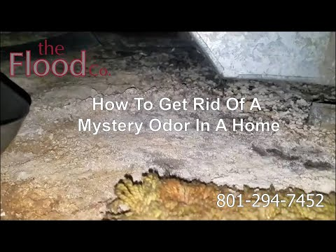 How To Get Rid Of A Mystery Odor In A Home The Flood Co
