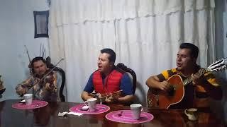 Descargar MP3 de Huapangueros Diferentes Mariposa