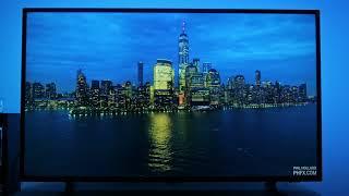 philips 7303 picture settings - Kênh video giải trí dành cho thiếu