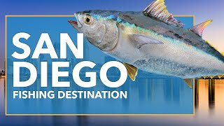 San Diego Fishing: All You Need to Know | FishingBooker