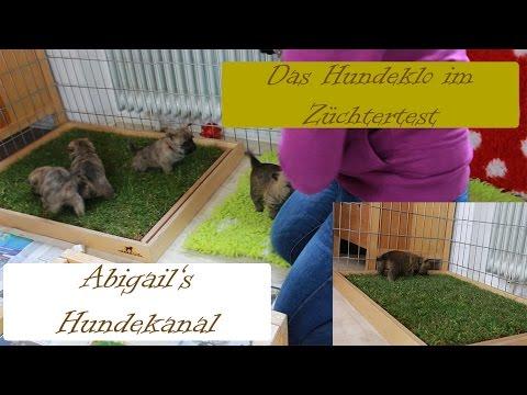 Carnilo  Hundeklo - Der Züchtertest   Hundekanal