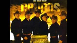 Sin Tu Amor - Los Crudos de Durango  (Video)