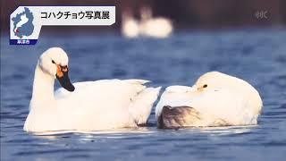 8月14日 びわ湖放送ニュース