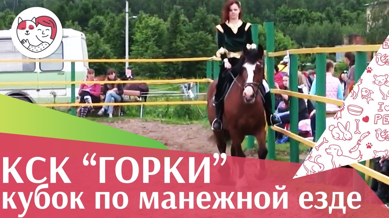 Летний кубок КСК Горки по манежной езде КЮР часть 10 на ilikepet