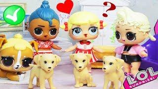 Новый мальчик ЛОЛ Сюрприз Luau берёт себе питомцев   Мультик для детей LOL Surprise Dolls