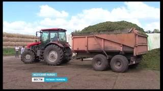 В Тюменской области приступили к заготовке кормов