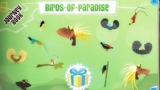 Animal Jam | Paradise Party Journey Book!