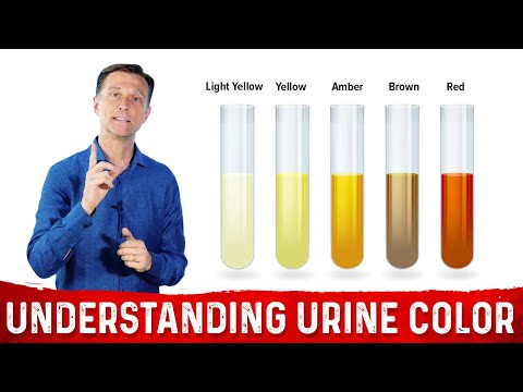 Wenn die Blutspende auf das Insulin