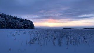 Ловля налима зимой карелия