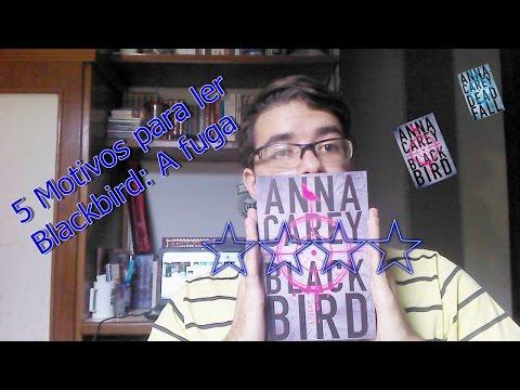 5 Motivos para ler Blackbird: A fuga