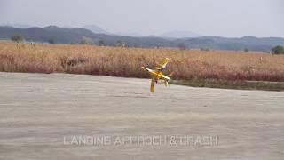 crash Freewing avanti S in oooumdo, rcplane