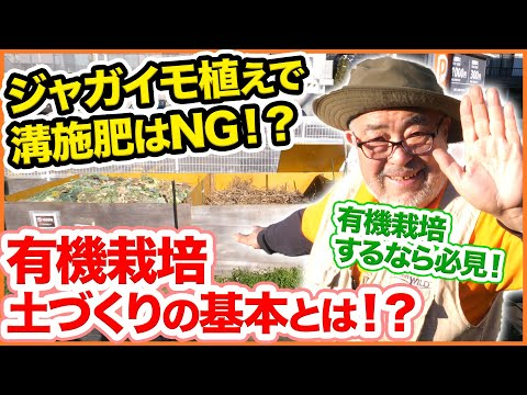 , title : 'ジャガイモ植え付け時に溝施肥はNG!?3月中に覚えたい、有機栽培の土づくりの基本を解説!【家庭菜園】【肥料】【施肥】