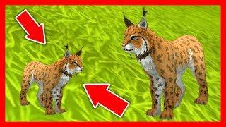 СИМУЛЯТОР РЫСИ #2 РОДИЛСЯ РЫСЁНОК Симулятор Жизни Зверей WildCraft про котят и собак от ДЕТСКИЕ ИГРЫ