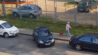 Женщины за рулем подборка