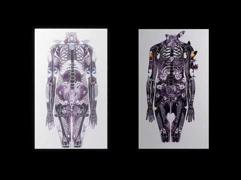 VSP #102 - Anatomy of a Soul