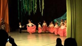 preview picture of video 'Danza Paraguaya 2012-1(polideportivo Filadelfia).AVI'