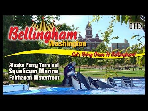 Video Bellingham Washington Visitor Info Waterfront