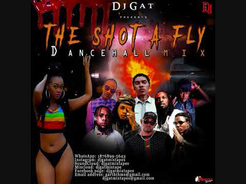 DANCEHALL MIX DJ GAT SHOT A FLY RAW FT ALKALINE/VYBZ KARTEL/MASICKA/876899-5643