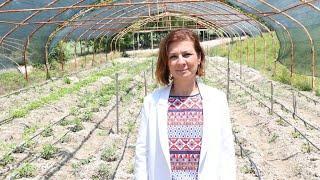Dünya Çevre Günü ve Tarım Üretimi