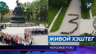 Новгородская область присоединилась к массовой акции «Сохраните детские жизни»