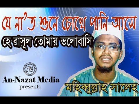Bangla herat touching naat I He Rasul tomay valobasi I Mohibbullah Saleh