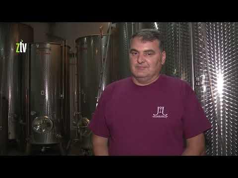 Regionalni brend Istočne Srbije porodičnoj vinariji u Rečkoj kod Negotina