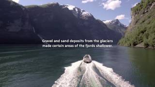 What is a Fjord Watch and learn