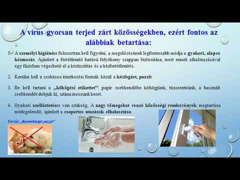 A test magas vérnyomásának komplex vizsgálata