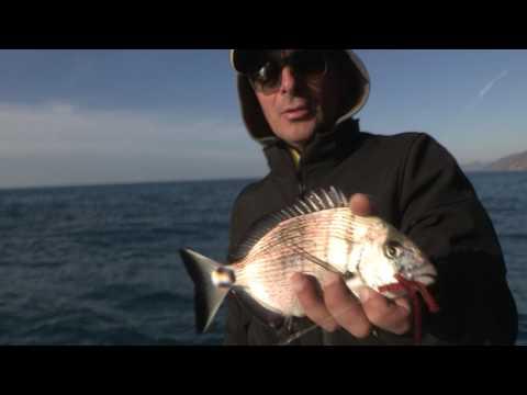 Vento di successo per pesca