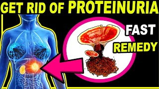 How to Get Rid of Protein in Urine [PROTEINURIA] Naturally and Fast