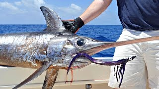 How To: Daytime Deep Drop Swordfishing with Hogy Lures