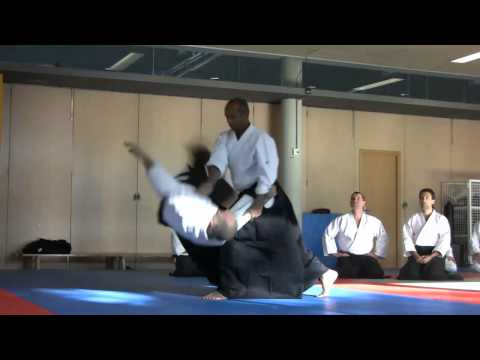 Curso Aikido (22/01/11)