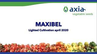 Maxibel
