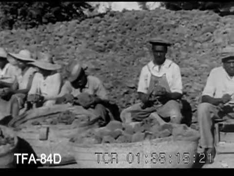 Kapučino svorio metimo gėrimas