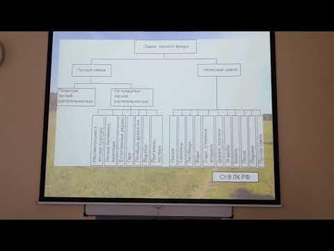 Правовой режим земель лесного фонда