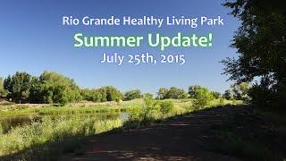 Summer Update 2015