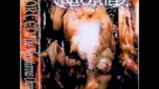 Aborted- The Necrotorous Chronicles
