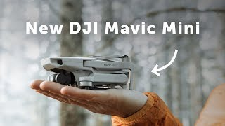 DJI Mavic Mini Hands-On Review - Can You Get Cinematic Footage?