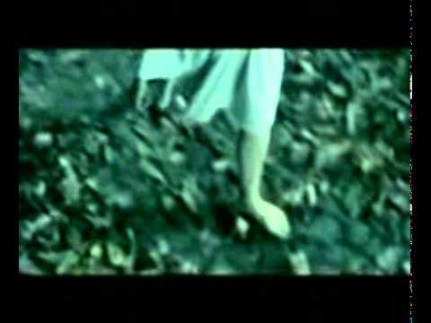 Lirik Lagu Feby Febiola Dan Video Karaoke Kumpulan Lyrics Terlengkap Di Wowkeren Com