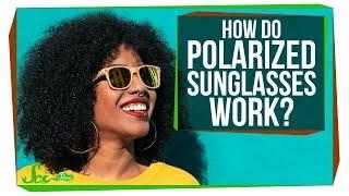 How Do Polarized Sunglasses Work? - Video Youtube
