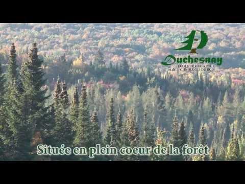 École de foresterie et de technologie du bois de Duchesbay