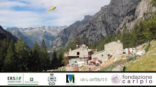 preview picture of video 'Trailer di presentazione progetto emblematico CARIPLO contratto di foresta Val Masino'