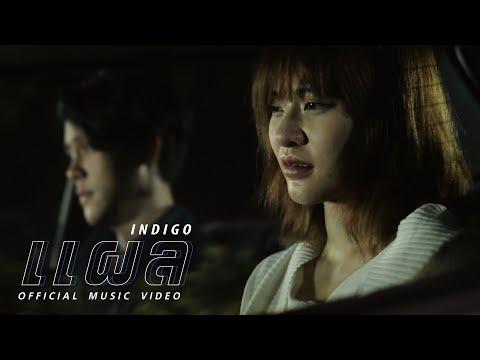"Lyric""แผล (Plae)"" by Indigo | ดึงดูดใจ Deungdutjai"