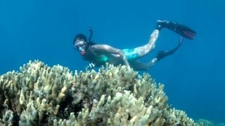 preview picture of video 'Waterfalls and Snorkelling Samoa 2013, Travel Video Guide'