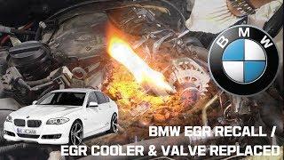 Bmw F30 Egr Clean
