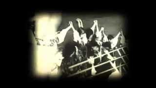 LUNATIC GODS - Kupalo (Slnovrat letný) OFFICIAL VIDEO HD